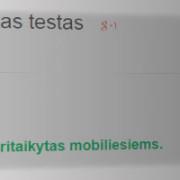 """""""Google"""" iš paieškos rezultatų nešalins mobiliesiems prietaisams nepritaikytų tinklalapių"""